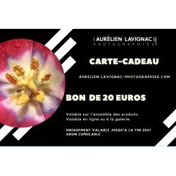 BON CADEAU DE 20 EUROS